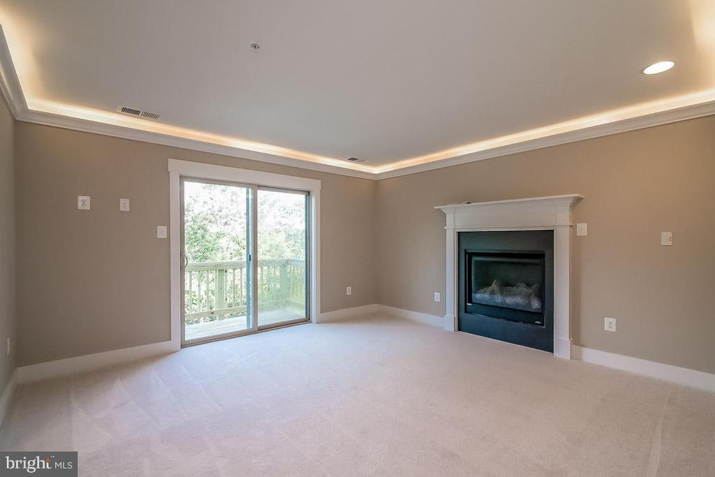 Master bedroom with optional fireplace! - 344 SADDLE RD, NEW MARKET