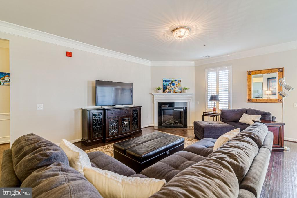 Spacious family room with eletric fireplace. - 20570 HOPE SPRING TER #205, ASHBURN
