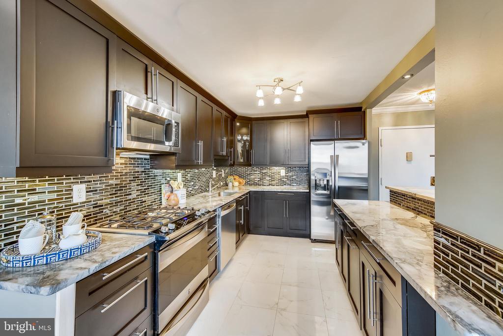 Granite & Stainless Steel Kitchen - 11801 ROCKVILLE PIKE #1405, ROCKVILLE
