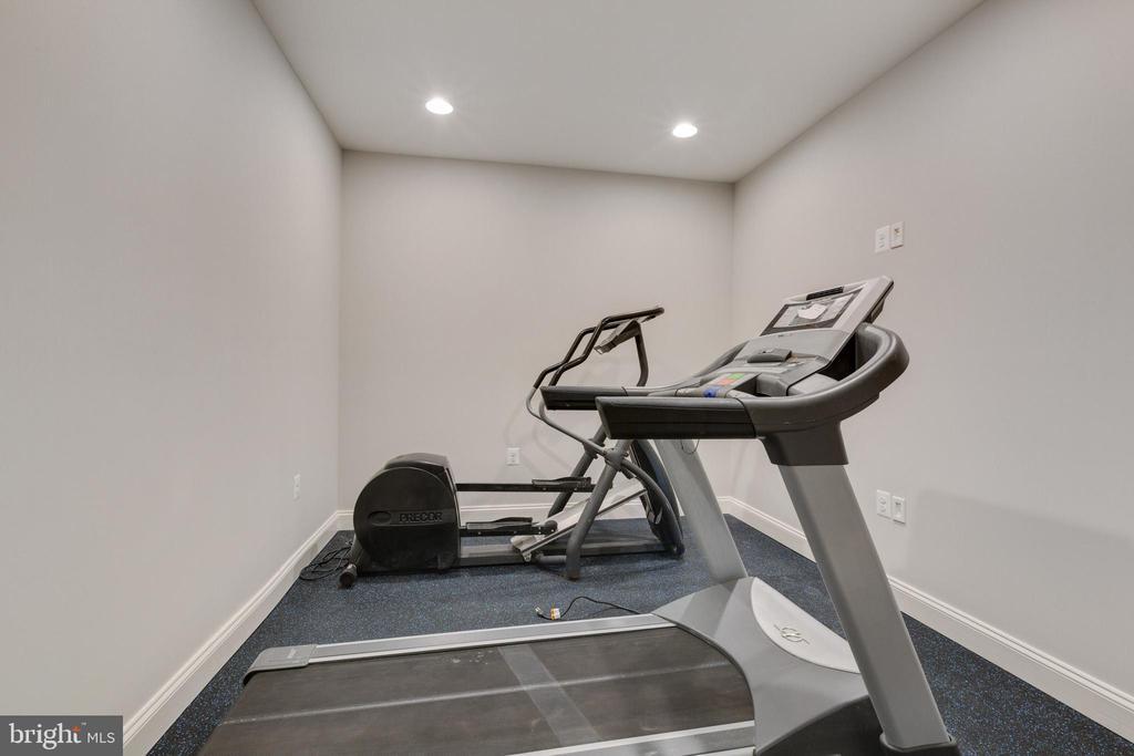 Lower level Exercise Room - 20240 MCNAMARA RD, POOLESVILLE