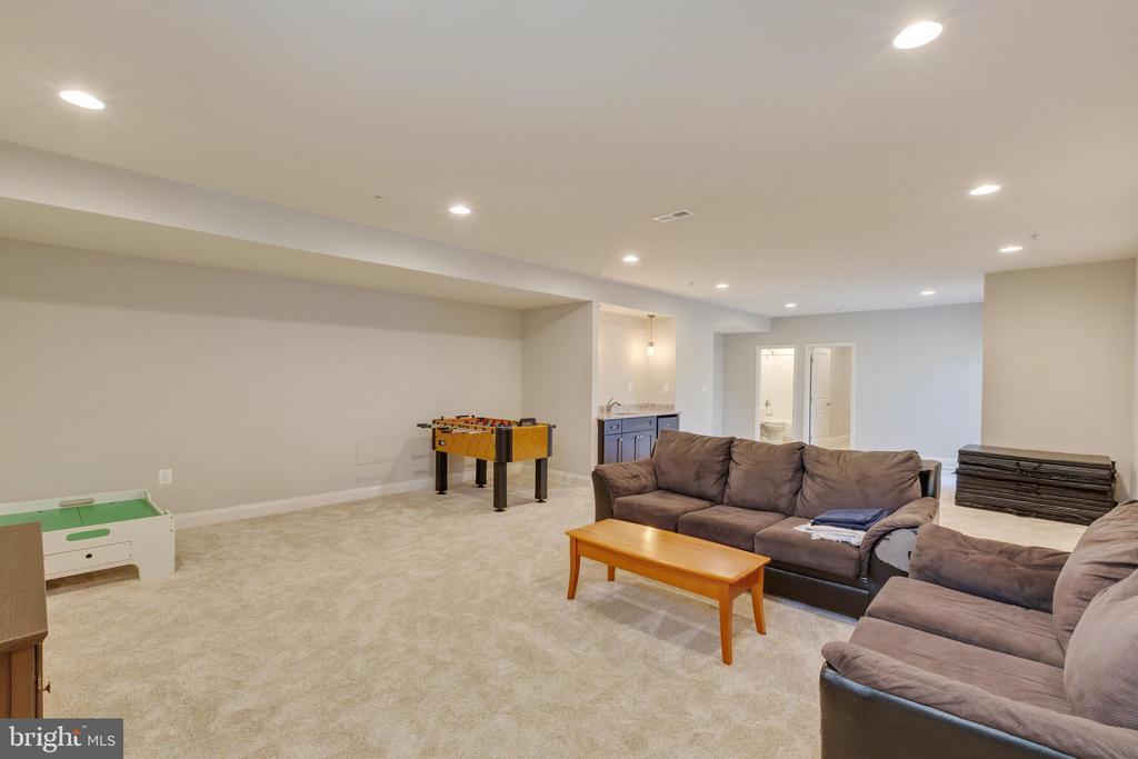 Recreation Room - 20240 MCNAMARA RD, POOLESVILLE
