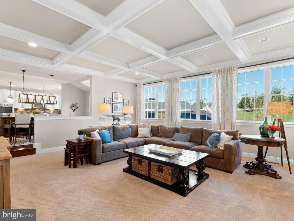 Coffered Ceiling in the Family Room - 41488 DEER POINT CT, ALDIE