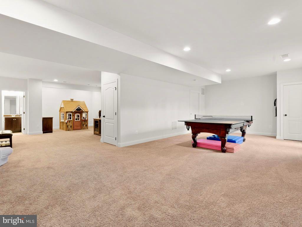 Large Rec Room in basement - 41488 DEER POINT CT, ALDIE