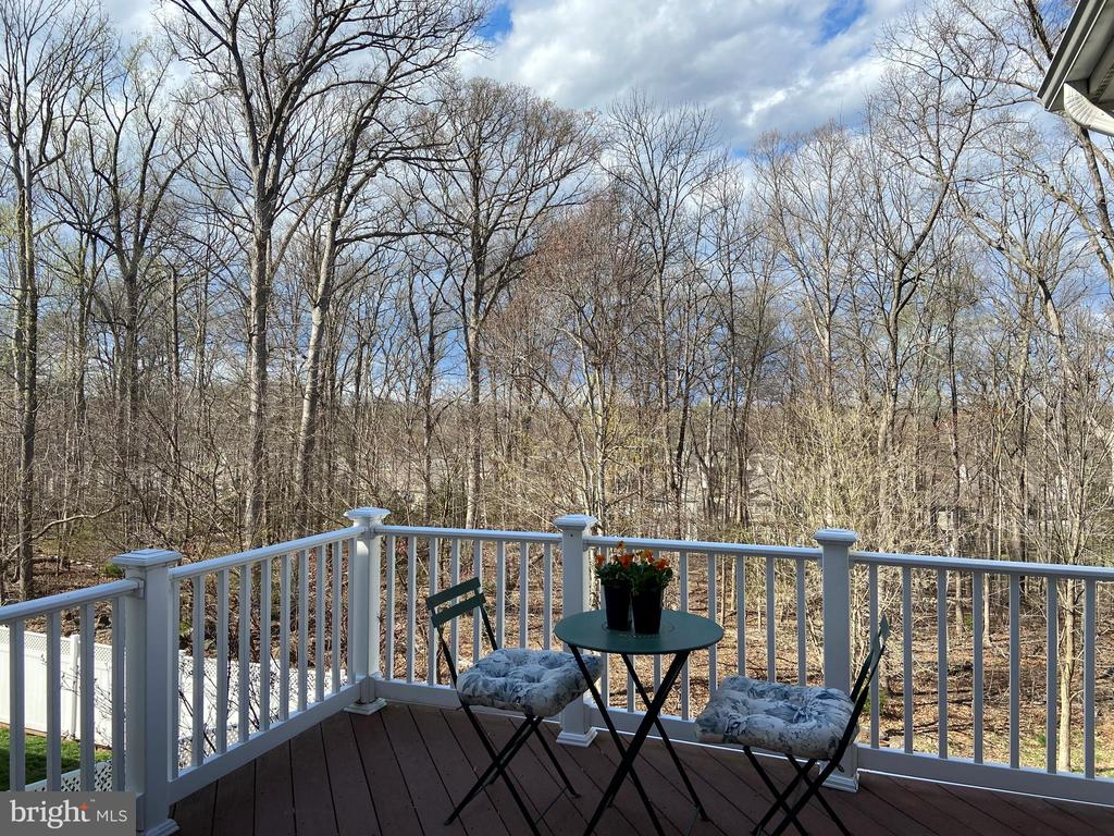 Deck from Sunroom - 43592 MERCHANT MILL TER, LEESBURG