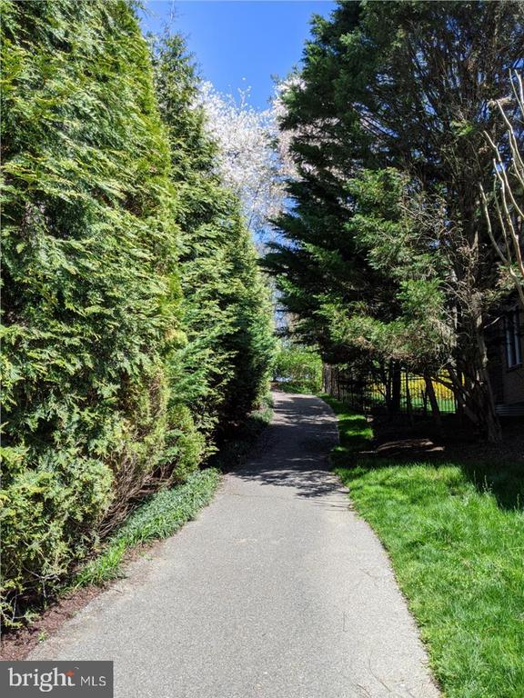 Path to Merrimac Park - 6308 MOUNTAIN BRANCH CT, BETHESDA