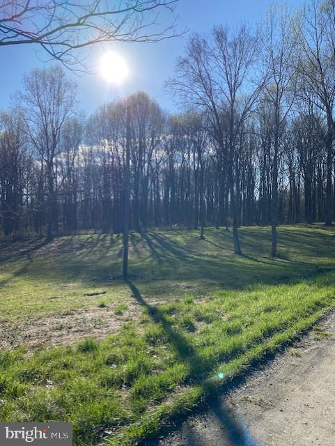 Arazi için Satış at Hume, Virginia 22639 Amerika Birleşik Devletleri