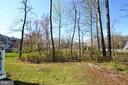 Trees - 41121 ROCKY BOULDER CT, ALDIE