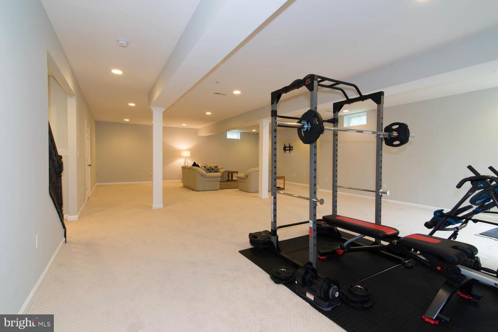 Recreation Room - 14416 CHELSEA GARDEN CT, LAUREL