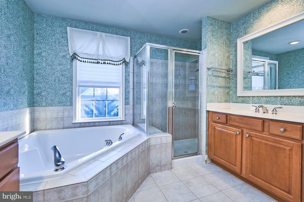 Master Bathroom - 18441 LANIER ISLAND SQ, LEESBURG