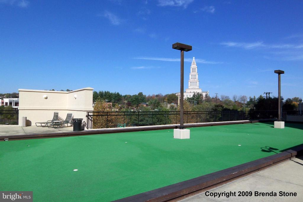 Putting Green on the rooftop recreation deck - 2151 JAMIESON AVE #1903, ALEXANDRIA