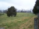 Field View  04/03/2020 - 3773 SHEPHERDSTOWN PIKE, MARTINSBURG