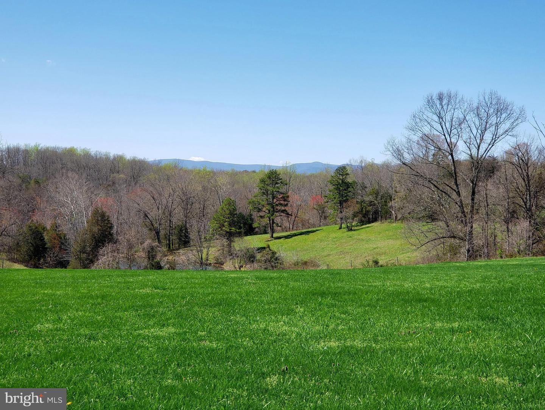 土地 為 出售 在 Aroda, 弗吉尼亞州 22709 美國