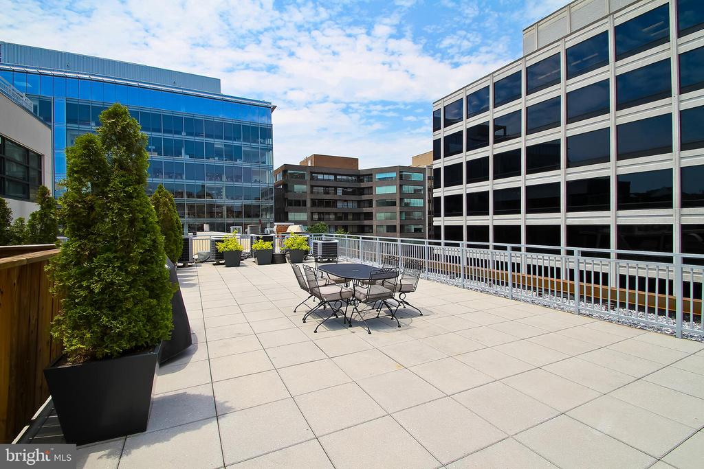 Roofdeck grill, dining facing west - 1830 JEFFERSON PL NW #8, WASHINGTON