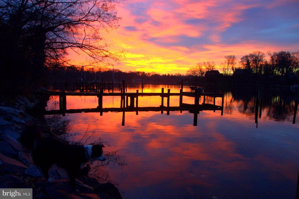Mother nature's sunrise palette - 1696 BEECH LN, ANNAPOLIS