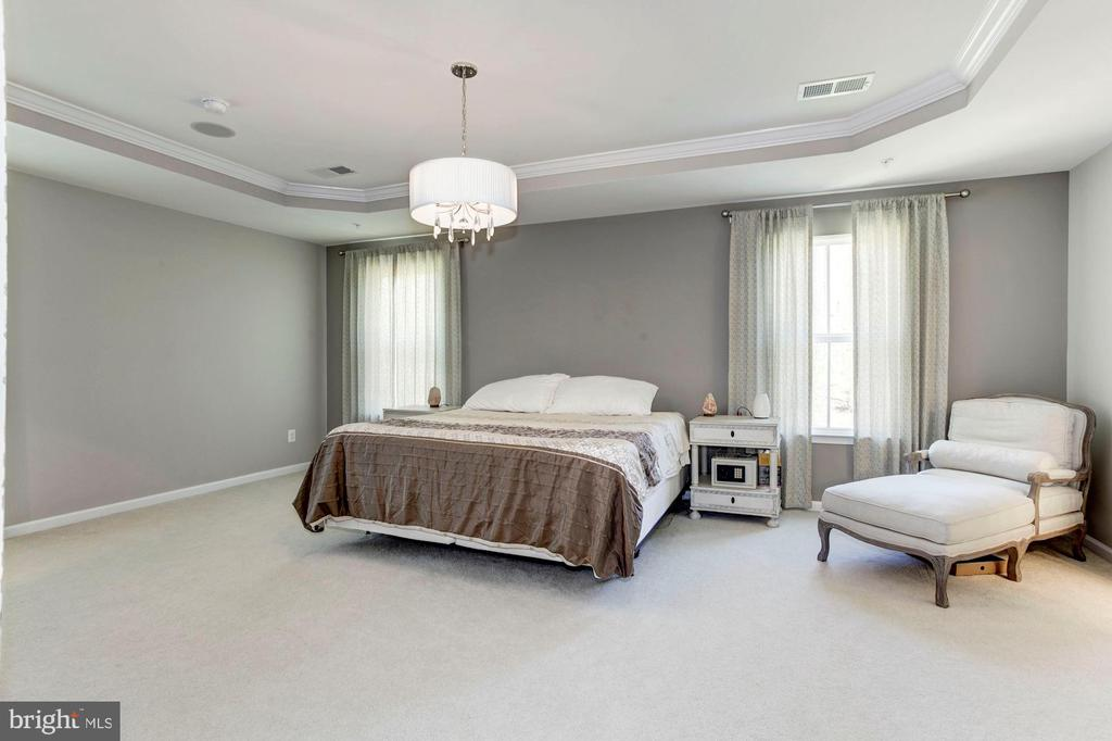 Spacious Master Suite w/Tray Ceiling - 2308 SWEET PEPPERBRUSH LOOP, DUMFRIES
