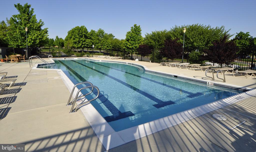 Community pool - 43663 PALMETTO DUNES TER, LEESBURG