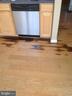 Stain on kitchen floor - 7320 WYTHEVILLE CIR, FREDERICKSBURG