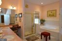 Main level lux aster bathroom - 40319 CHARLES TOWN PIKE, HAMILTON