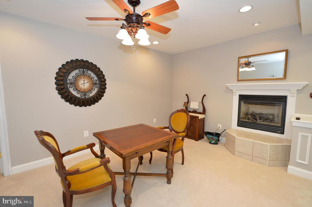 Lower level dining area with gas fireplace - 40319 CHARLES TOWN PIKE, HAMILTON