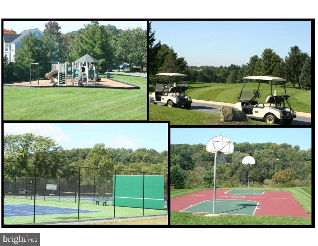 Tot Lots, Golf, Basketball, Tennis and more! - 7142 MASTERS RD, NEW MARKET