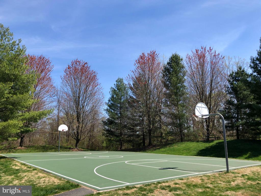 Basketball court - 191 CONNERY TER SW, LEESBURG