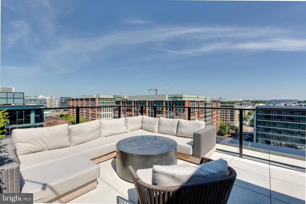Rooftop Residence Entertaining - 1300 4TH ST SE #808, WASHINGTON