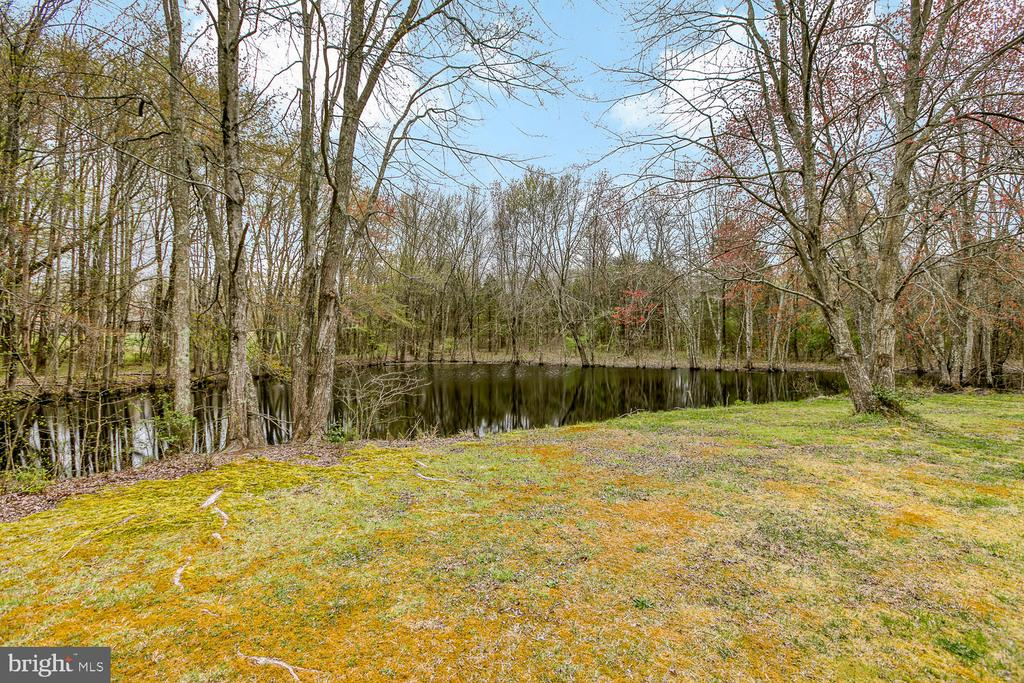 1/4 acre pond - 149 SUMMER BREEZE LN, FREDERICKSBURG