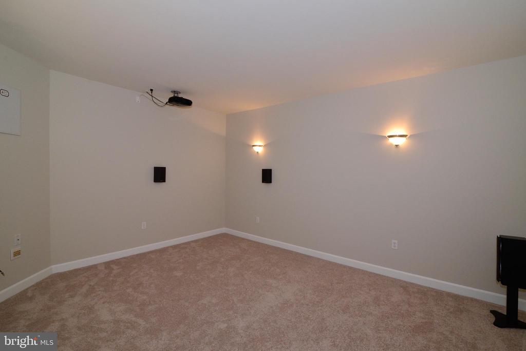 Movie Room (basement) - 14042 BLUE VIEW CT, LEESBURG