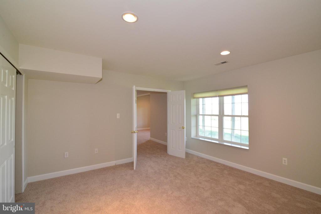 Basement Den/Bedroom 5 - 14042 BLUE VIEW CT, LEESBURG