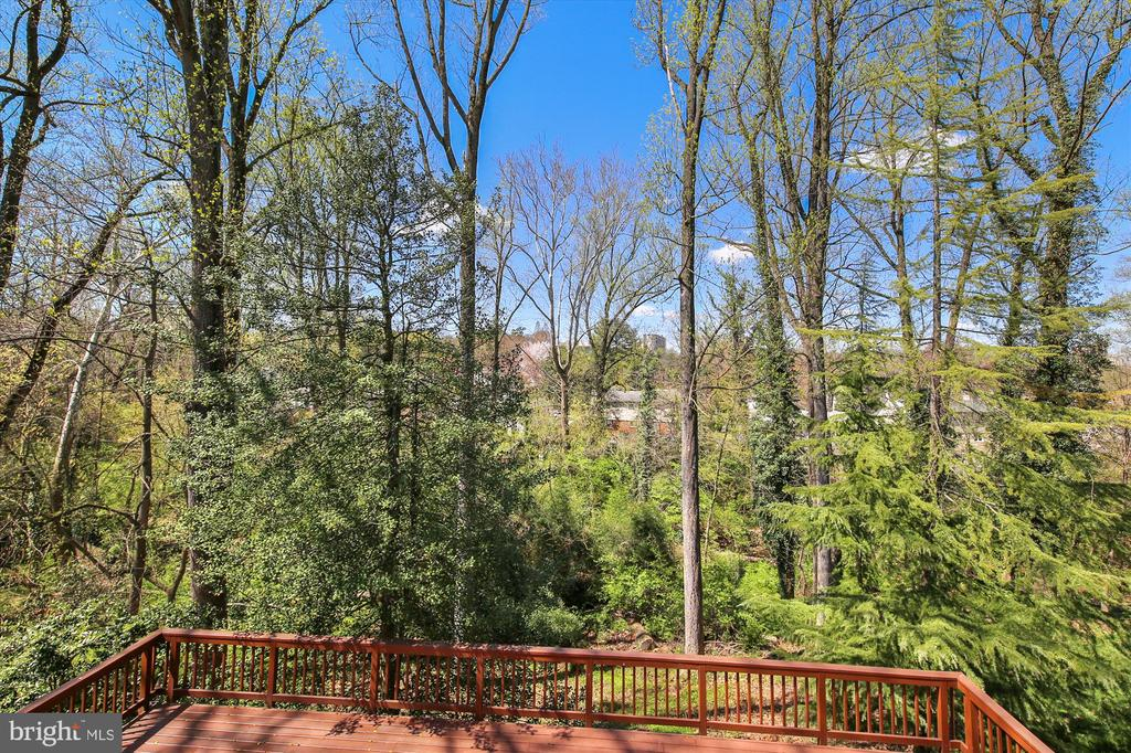 View fro L.L. Deck - 4833 BROAD BROOK DR, BETHESDA