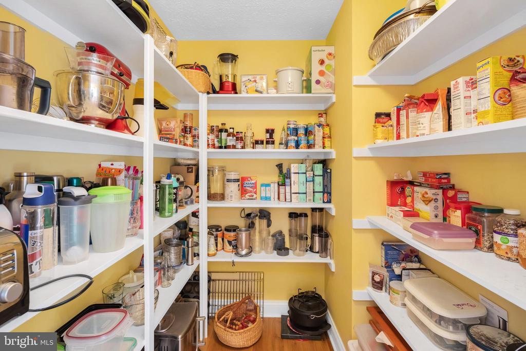 Large walk in pantry - 34332 BRIDGESTONE LN, BLUEMONT