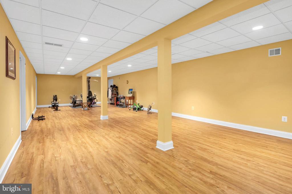 Flexible space in walk  out basement - 34332 BRIDGESTONE LN, BLUEMONT