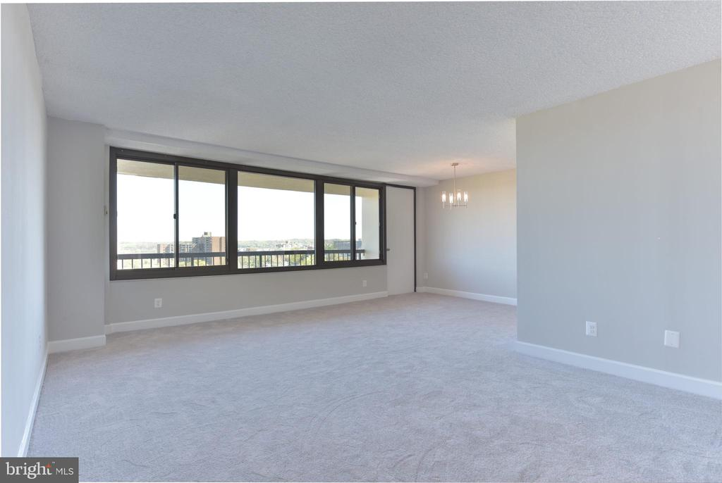 What a great first impression ~ a wall of windows - 5500 HOLMES RUN PKWY #1210, ALEXANDRIA