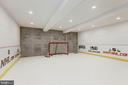 Sport Court/Synthetic Ice Hockey Rink - 5427 GOLDSBORO RD, BETHESDA
