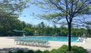 Community Pool - 42764 RIDGEWAY DR, BROADLANDS