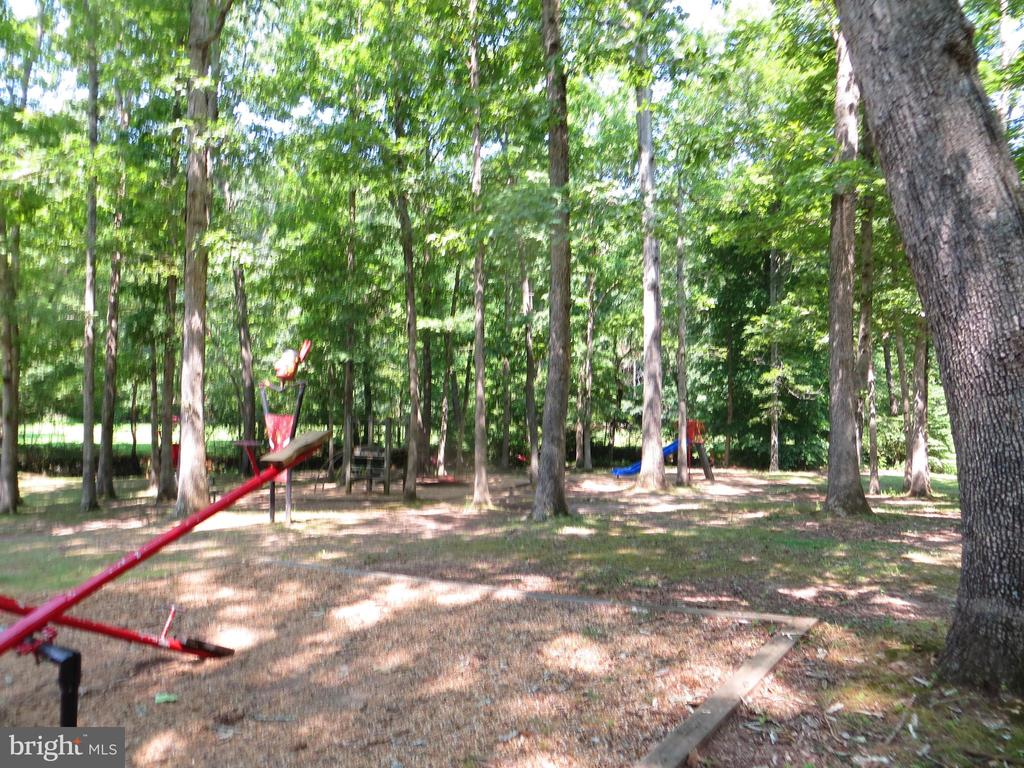 Tot Lot Playground - 11709 WILDERNESS PARK DR, SPOTSYLVANIA