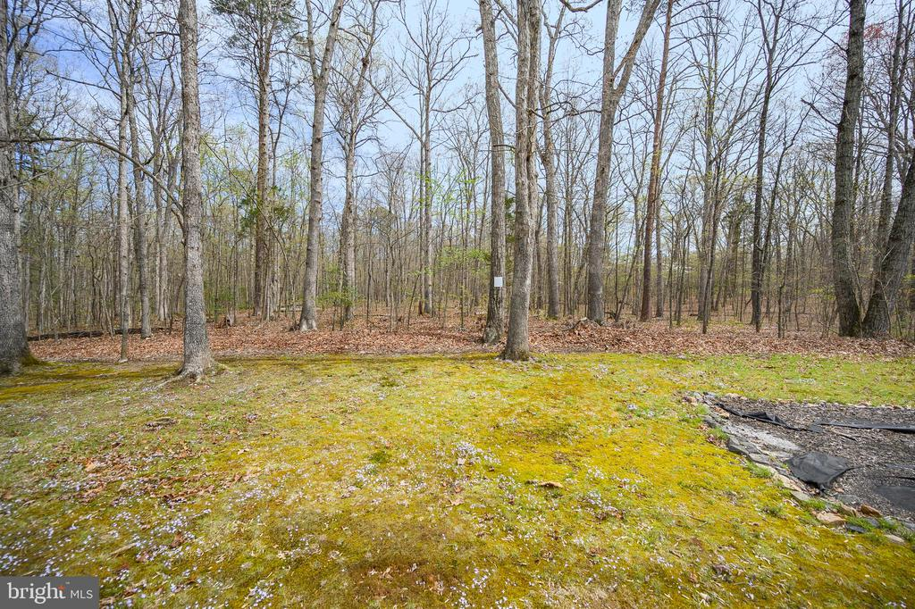 Backyard View - 11709 WILDERNESS PARK DR, SPOTSYLVANIA