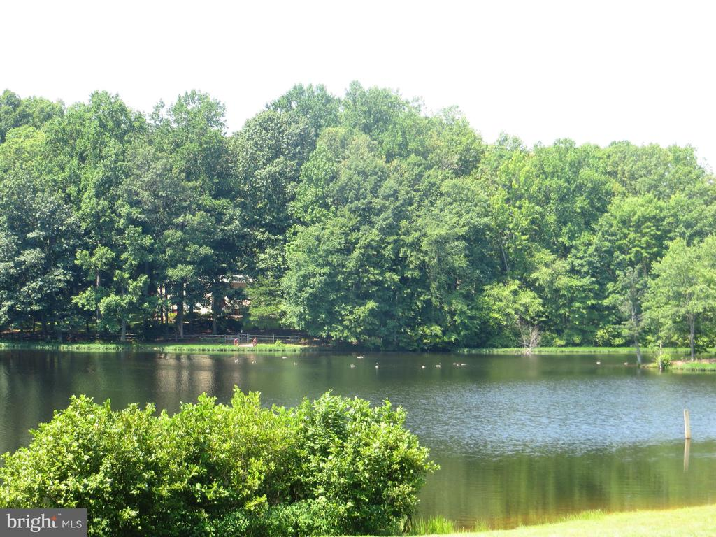 Grant Lake - 11709 WILDERNESS PARK DR, SPOTSYLVANIA