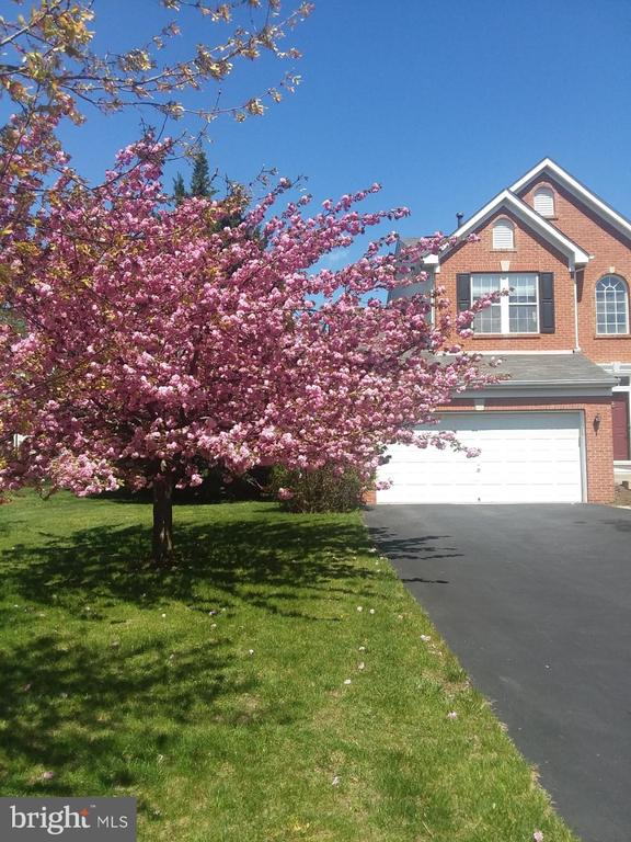 Beautiful curb appeal with Cheery trees blooming! - 202 JENNINGS CT SE, LEESBURG