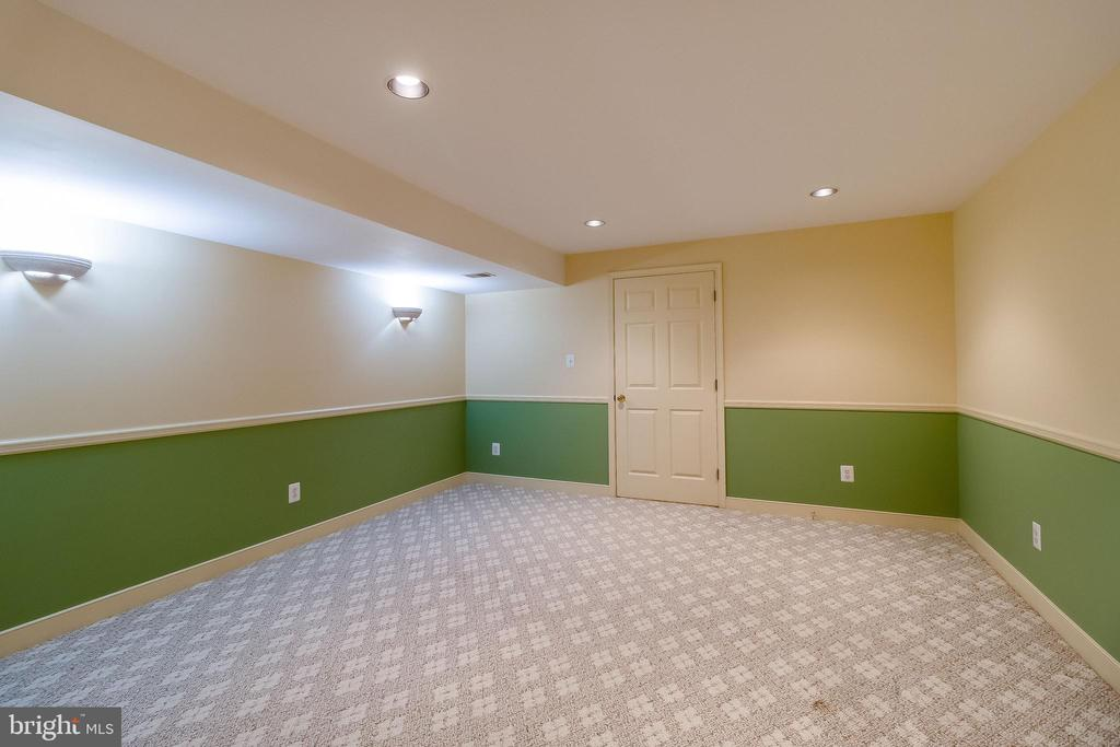 Den with Closet in Lower Level - 1508 JUDD CT, HERNDON