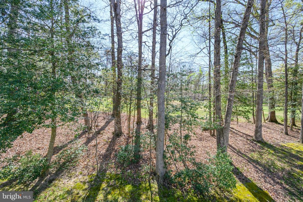 Private yard on the golf course - 623 MT PLEASANT DR, LOCUST GROVE