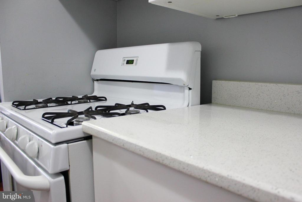 Kitchen Stove and Counter - 102 DUVALL LN #4-104, GAITHERSBURG