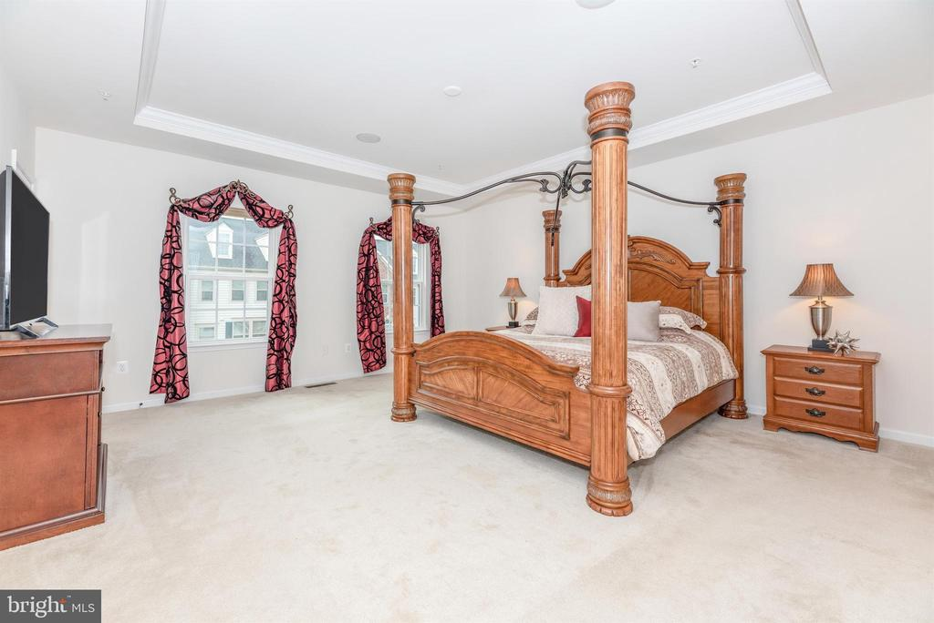 Tray ceiling and all neutral tones - 6434 ALAN LINTON BLVD E, FREDERICK