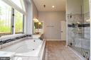 Master Bath - 6505 MATTHEW LN, MINERAL
