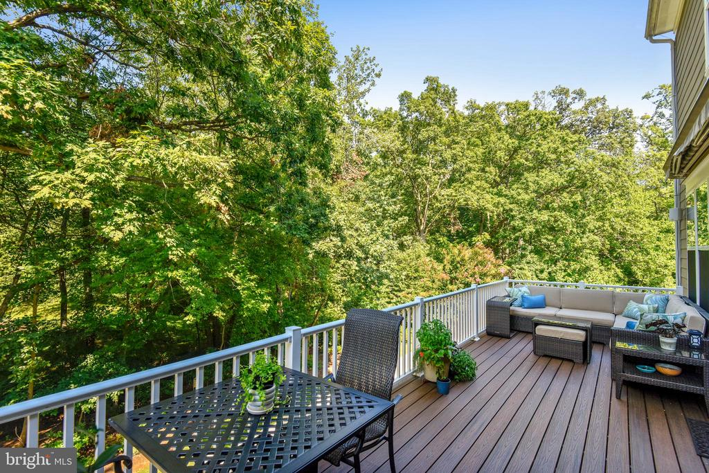 Deck ~ awesome views ! - 10264 GREENSPIRE DR, OAKTON