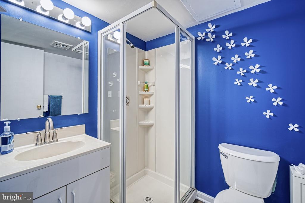 Full bathroom in the basement - 11610 HENDERSON RD, CLIFTON