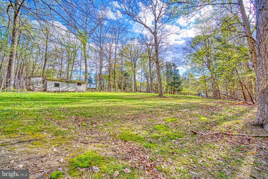 Private lot perfect for animals or quite enjoyment - 11610 HENDERSON RD, CLIFTON