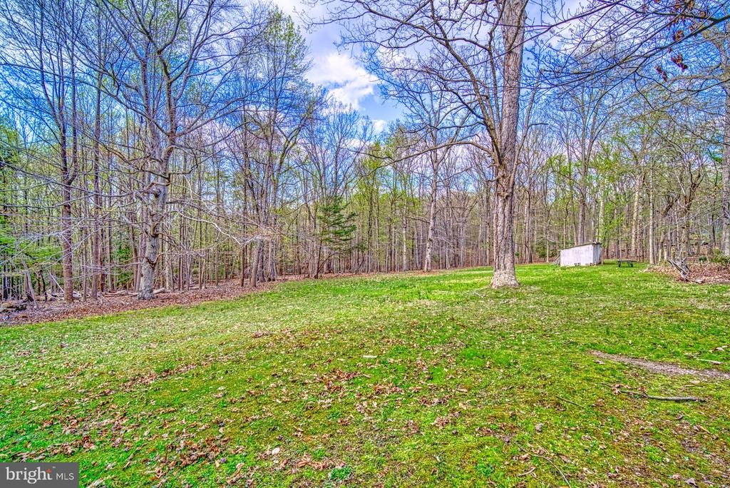 Back 1.5 acre partially cleared, partially wooded - 11610 HENDERSON RD, CLIFTON
