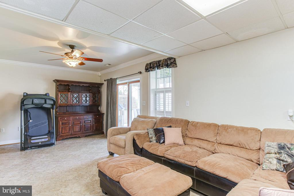 Lower Level-Family Room - 19126 SANDYHOOK RD, KNOXVILLE