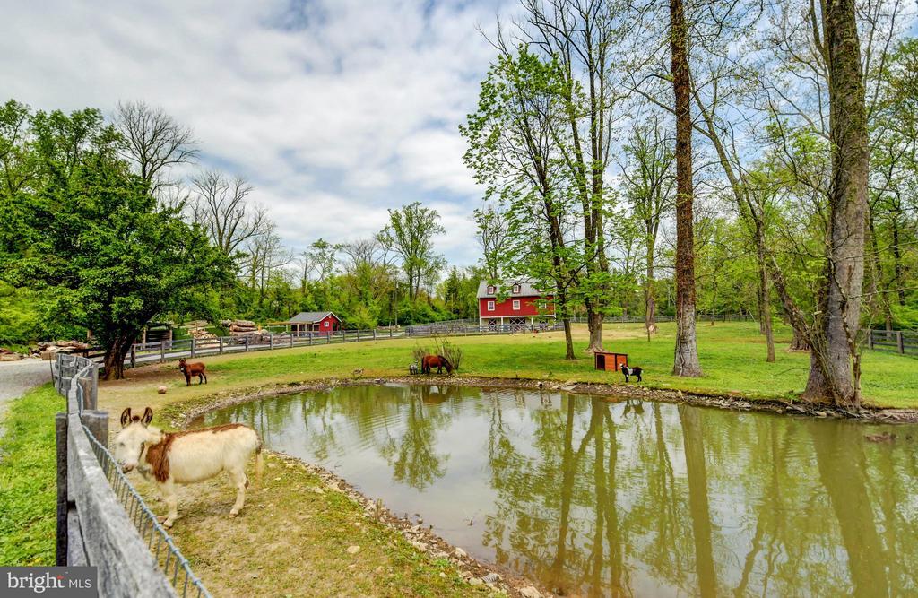 Pond & Paddocks - 10807 GREENSPRING AVE, LUTHERVILLE TIMONIUM